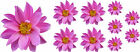 Pink Flower Decals Car Stickers Graphics Nursery Wall Window Decorations Art