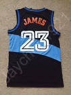 RARE LeBron James Cleveland Cavaliers Blue Swingman Sewn On Jersey Size S XL NWT