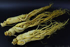 Panax Korean White Ginseng WHOLE ROOTS,Weiß Wurzel CHINA HERB,Herbal tea TCM TEE