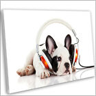 French Bulldog Puppy Headphones Framed Canvas Print Animal Wall Art Picture