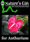 ANTHURIUM PLANT FERTILIZER, WORM CASTING EXTRACT CONCENTRATE, ORGANIC