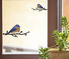 CLR:WND - Eastern Bluebird - Stained Glass Vinyl Window Decal ©YYDC -CHOOSE SIZE