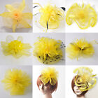 Lady Girl Yellow Net Fascinator Feather Headpieces Hairpin Ascot Hat Party Bride