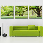 Oil Painting Modern Wall Deco Art Scenery Flower Picture Print On Canvas NoFrame