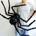 Realistic Black Large Spider Plush Toy Realistic Hairy Spider For Halloween HOT