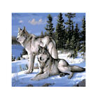 Snow Wolf Digital Diamond Painting Canvas Paint By Number DIY Kit Home Decor