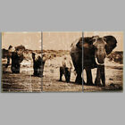 3 Panels Canvas Print Home Decor Antique Elephant Photo on Canvas Wall Art