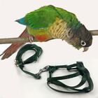 Parrot Bird Leash Adjustable Traction Harness Training Rope Flying Band