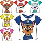 Boys Girls Officially Licensed Paw Patrol Short Sleeve T-Shirt Top. BNWT. (31)