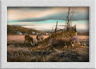 Terry Redlin SHARING_THE_BOUNTY Art printed on canvas home decoration painting
