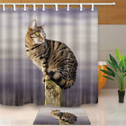 Cat Standing On A Stone Column Bathroom Shower Curtain Set Fabric &12 Hooks