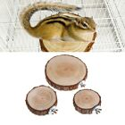 Pet Parrot Bird Cage Perch Platform Round Wooden Stand Board For Squirrel Birds
