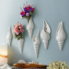 Wall Flower Vase Conch Creative Background Simple Modern Murals Home Decoration