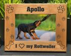Personalized Engraved // Rottweiler // Picture Frame