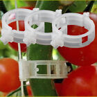50/100Pcs Supports Connects Vines Cages Plants Tomato Vegetable Farming Clips DY