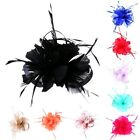 Ladies Women Flower Hair Clip Feathers Small Mini Top Hat Wedding Fascinator