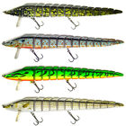 9.5 Inches Striper Fishing Bait Lure Swim Bait Life-like EEL Sinking NEW