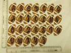 1 NEW SEW OR IRON-ON EMBROIDERED ALPHABET LETTER NUMBER RUGBY BALL MOTIF PATCH
