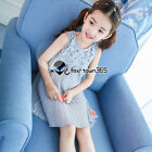 Summer Girl Child Baby Kids Lace Chiffon Vest Sleeveless Party Dress 3-10Y