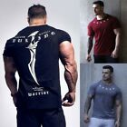 Men's Gym Muscle Bodybuilding Cotton Sport Fit Fitness Casual T-shirt Tee Tops image