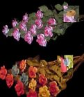 NEW Capodimonte 1 Dozen Assorted Color Roses OR Pink Roses Flower Made in Italy