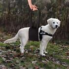 Dog Lift Harness Portable Help With mobile Disable,Elderly Pet with Weak Legs