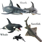 Educational Science Toy Simulated Shark&Whale&Sawfish Model Children Bath Toy