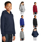 Kyпить Hanes Youth Pullover Hooded Sweatshirt Unisex EcoSmart Tagless Hoodie P470 на еВаy.соm