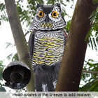 Realistic Owl Decoy Rotating Head Repellent Pest Bird Control Scarecrow Scarer