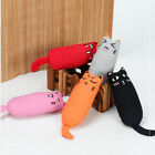 Cats Kitten Dogs Colorful Plush Toy Funny Play False Toy Pet Accessories LH