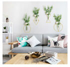 Floral Plant Container Accessory Decor European Style Simple Glass Hanging Wall