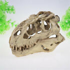 Aquarium Decoration Dinosaur Head Skull Tank Ornament for Fish Turtle Shrimp