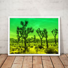 LA California Cactus Desert Green Decor Art Poster Print - A3 A2 A1 A0 Framed