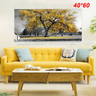 Large Tree Yellow Leaves Nature Pictures Print Canvas Wall Art Prints Unframed. <br/> ◇4 Sizes◇Tree Wall Art Prints◇UK STOCK