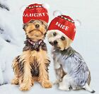 Dog Hat Winter Naughty Nice Cute Hat  Snug  Knitted Lovable Hat for Winter New