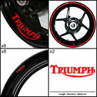 Triumph  Motorcycle Sticker Decal Graphic kit SPKFP1TR001 $80.75 USD on eBay