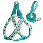 Brand New Step-in Puppy Small Pet Dog Harness and Matching Leash Unique Design