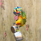 Bird Parrot Cage Skewer Food Meat Stainless Steel Stick Spear Fruit Holder Toy