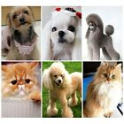 Pet Dog Cat Hair Shedding Grooming Trimmer Puppy Fur Comb Brush Slicker*Tools US