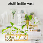 Hanging Glass Pot Flower Plant Pot Hydroponic Container Wooden Stand