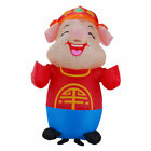 Easter Adult Performance Costume Pink Pig Happy Pig Dream Party Purim Halloween