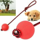 Indestructible Dog Ball on a Rope for Pet Puppy Chew Toys Tug Balls