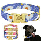 Adjustable Floral Nylon Personalized Dog Collar Custom Engraved Gold Nameplate
