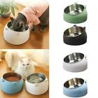 400ml Cat Bowl Raised No Slip Stainless Steel Elevated Stand Tilted Feeder 2020