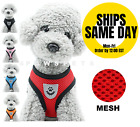 Mesh Padded Soft Cat Pet Dog Harness Breathable Comfortable Many Colors S M L