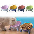 Tilted Cat Bowl Raised Elevated Stand Pet Dog Food Water Bowl Feeder Dish New