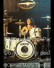 AUDIE DESBROW PHOTO GREAT WHITE DRUMS 8X10 by Marty Temme