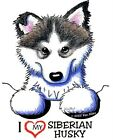 Siberian Husky Dog mixed lot garments #7402 kiniart pet