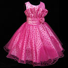 Pinks Baby Fancy Wedding Party Flower Girls Dress 2-10Y