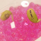 Multifunctional Water Beads - Ideal for fresh cut flowers or plants - 5g Bag